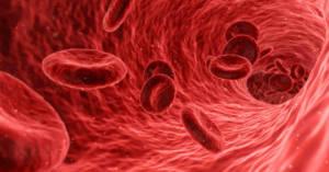 Cellule del sangue. Scoperti i meccanismi di recidiva della leucemia mieloide acuta